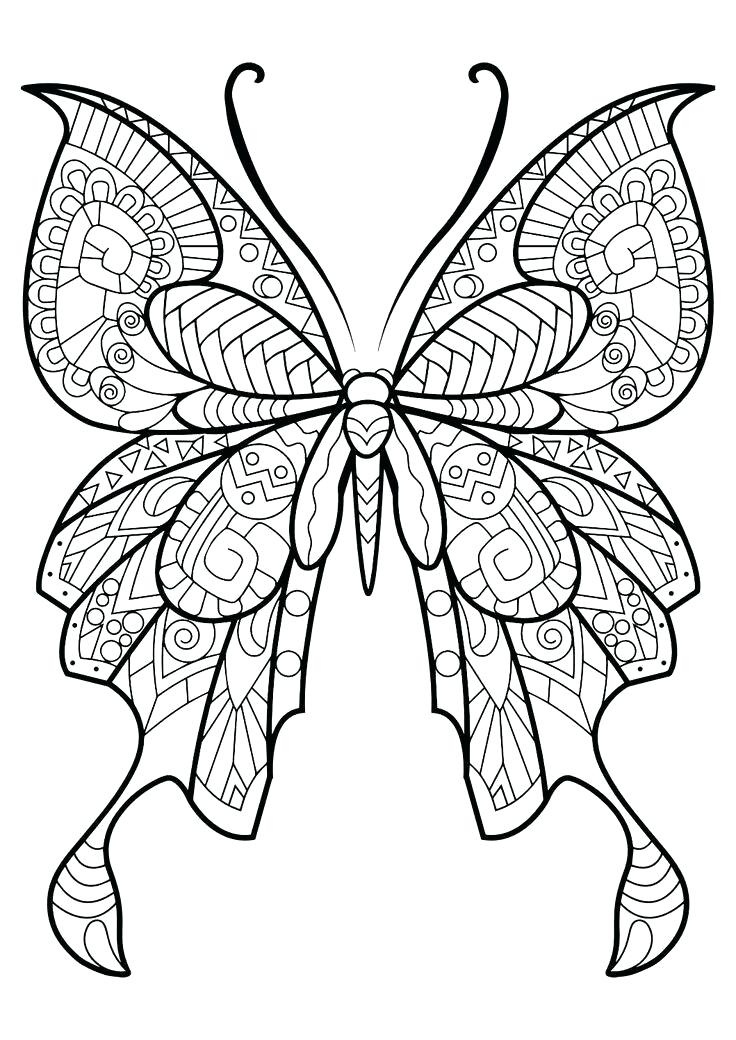 736x1040 Beautiful Butterfly Coloring Pages Butterfly Coloring Pages Cute
