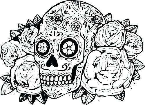 500x362 Hard Coloring Pages Printable Free Hard Animal Coloring Pages Hard