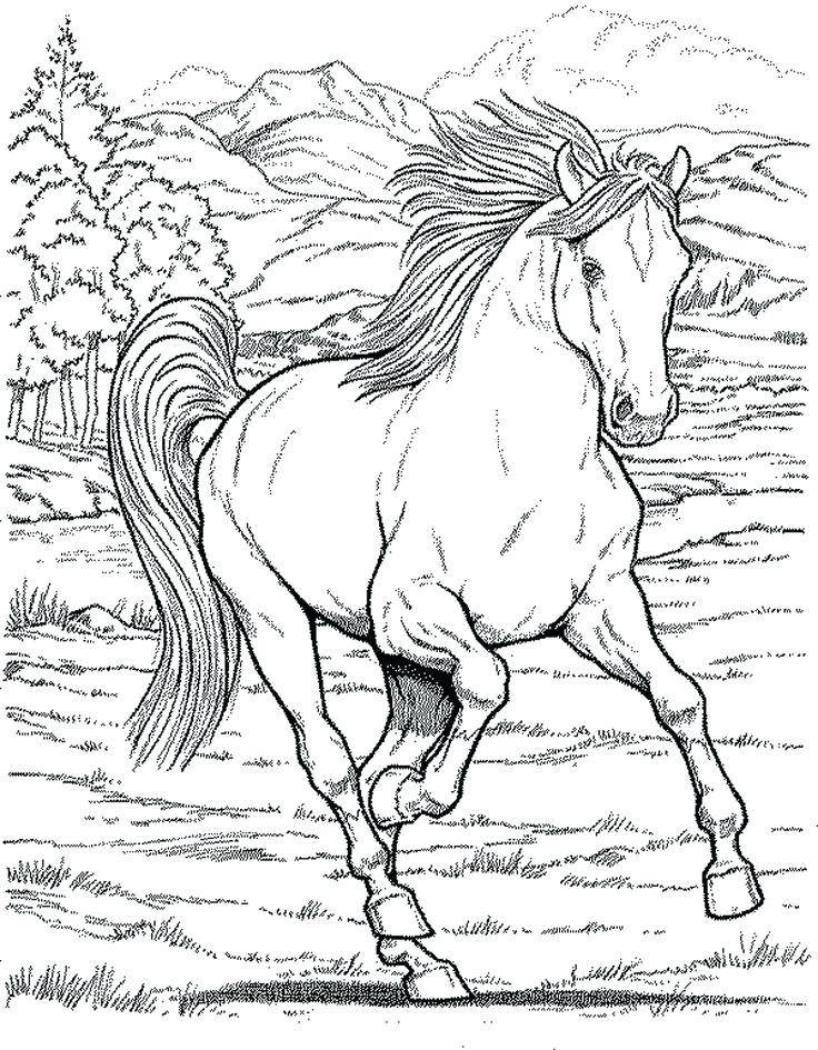 736x945 Printable Hard Coloring Pages Free Coloring Pages For Adults