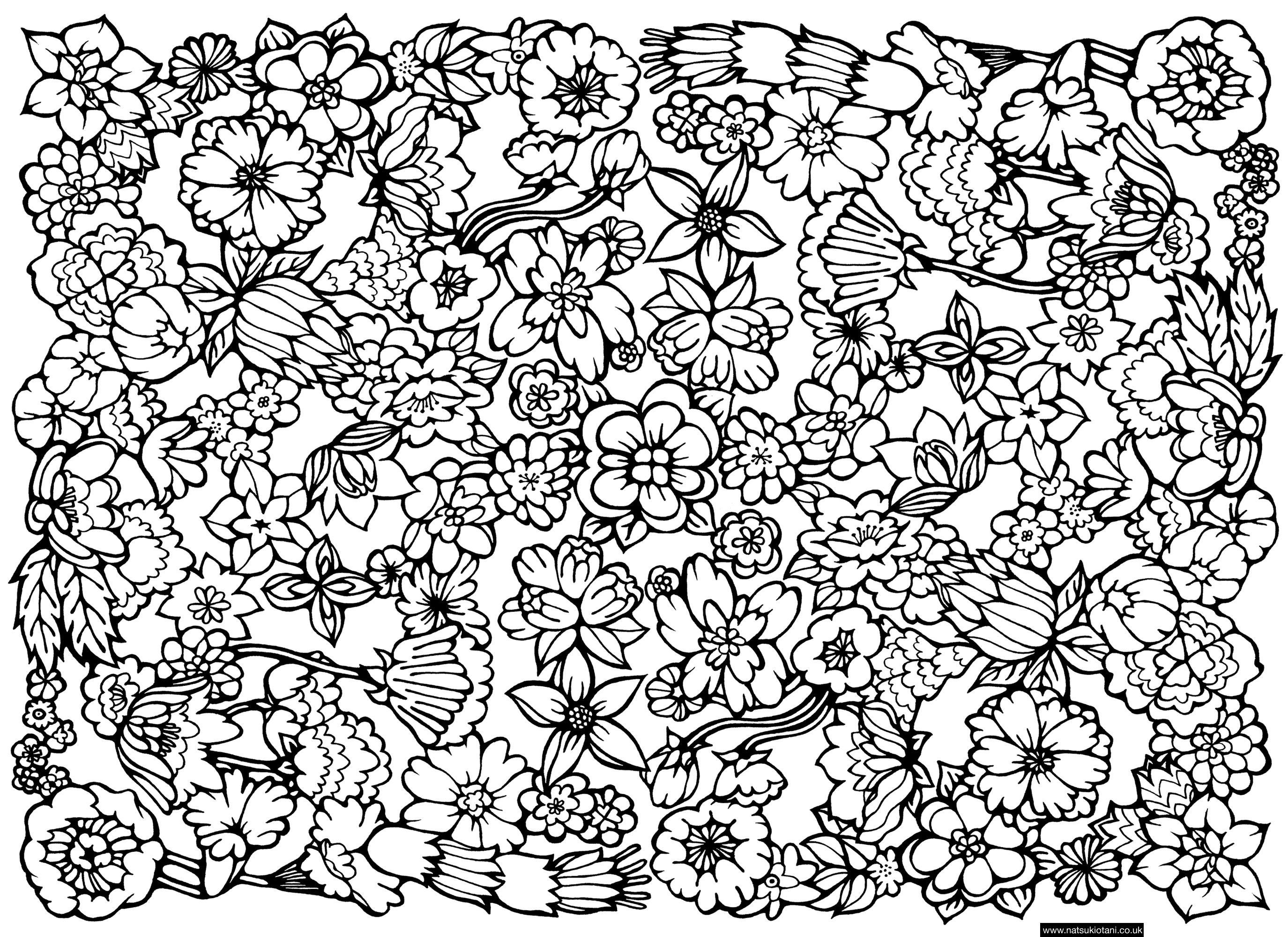 2749x2000 Unbelievable Flower Pattern Coloring Page With Hard Coloring Pages