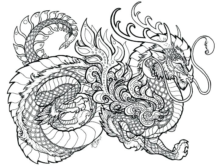 736x546 Hard Coloring Pages For Adults Complex Dragon Zahlkarte Site