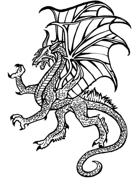 567x730 Hard Dragon Coloring Pages