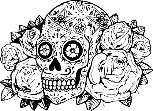 500x362 Classy Hard Coloring Pages For Adults Of Animals Flowers Dragons