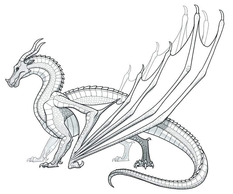 800x668 Coloring Page Of A Dragon Dragon Colouring Page Dragon Colouring