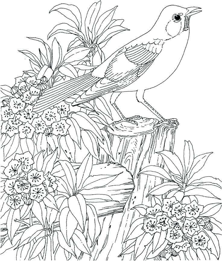 736x866 Hard Coloring Page Hard Coloring Page Hard Coloring Pages Online