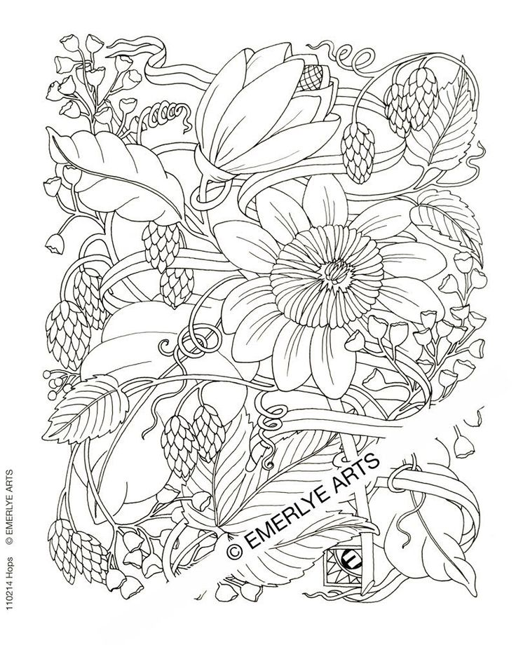 736x920 Challenging Coloring Pages For Adults