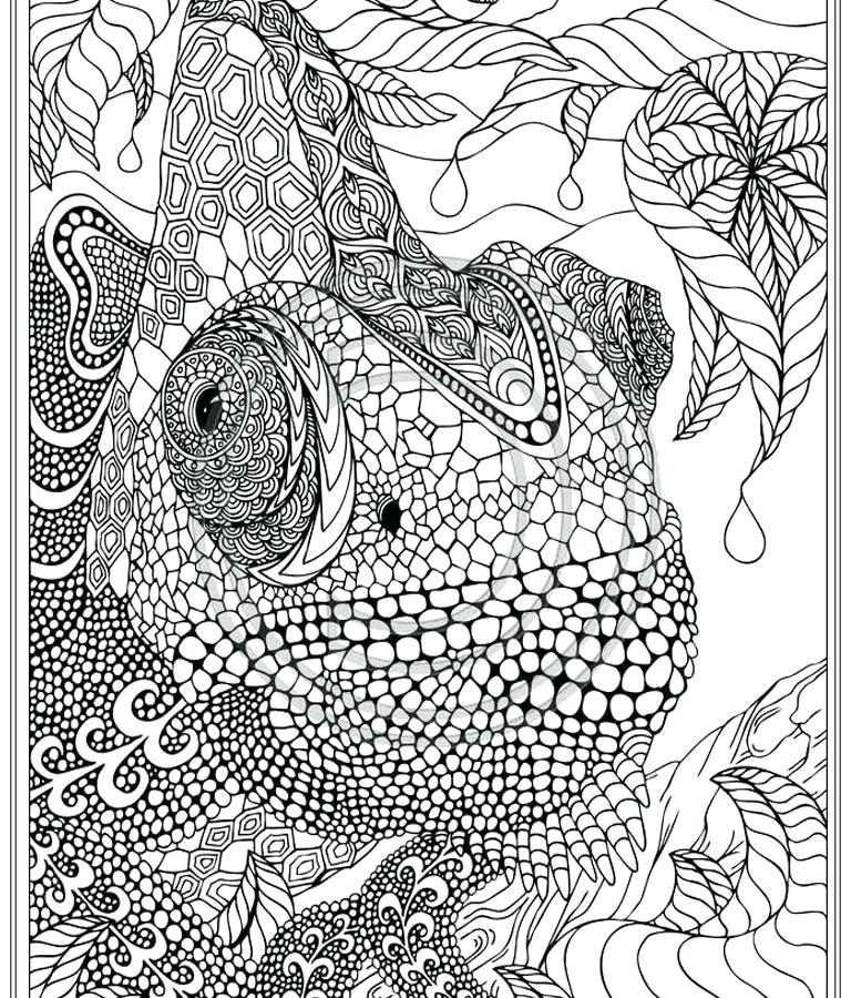 768x900 Intricate Coloring Pages Great Intricate Mandala Coloring Pages