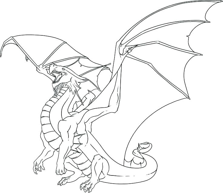 736x638 Dragon Coloring Pages For Adults Dragon Pictures To Color Dragon