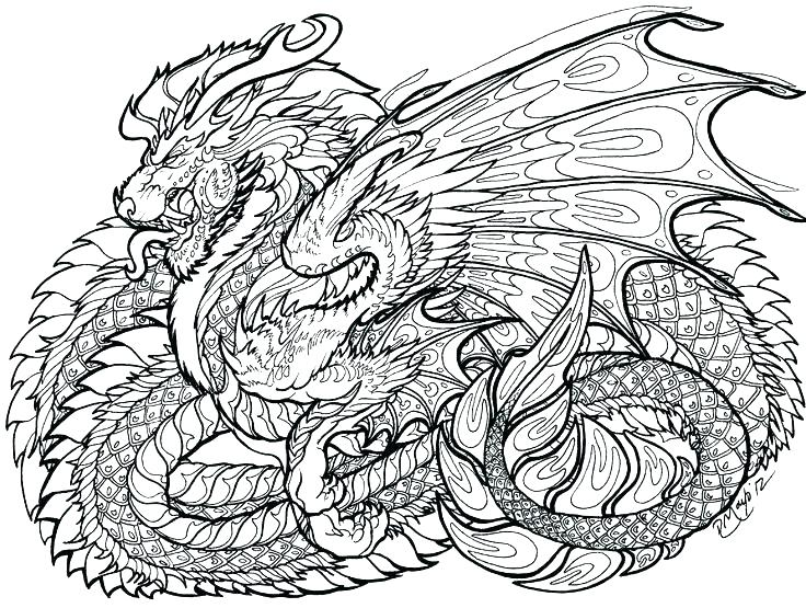 736x555 Dragon Coloring Pages For Adults Plus Elegant Dragon Coloring