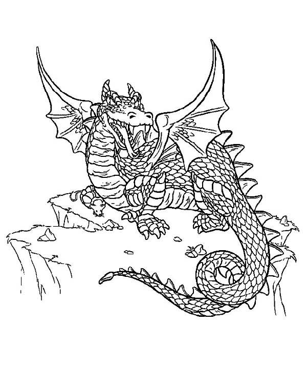 600x753 Difficult Dragon Colouring Pages For Adults