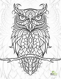 202x262 Image Result For Hard Owl Coloring Pages Owl Design