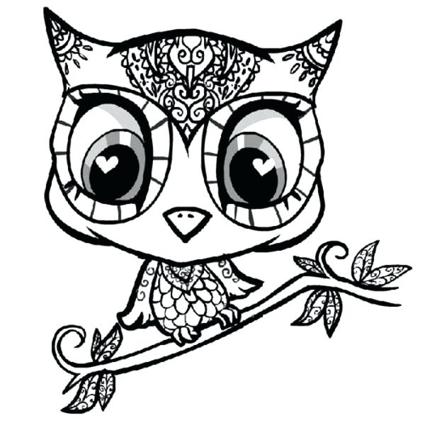 600x607 Owl Color Pages Hard Owl Coloring Pages Cute Owl Color Pages