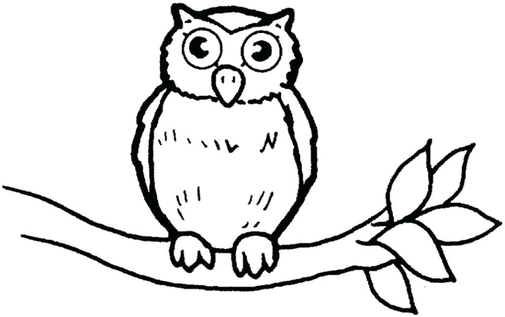 1024x643 Owl Colouring Pages Limited Owl Color Sheets Coloring Of Owls