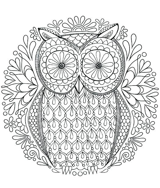 525x618 Owls Coloring Pages Coloring Page Owl Difficult Owl Coloring Pages