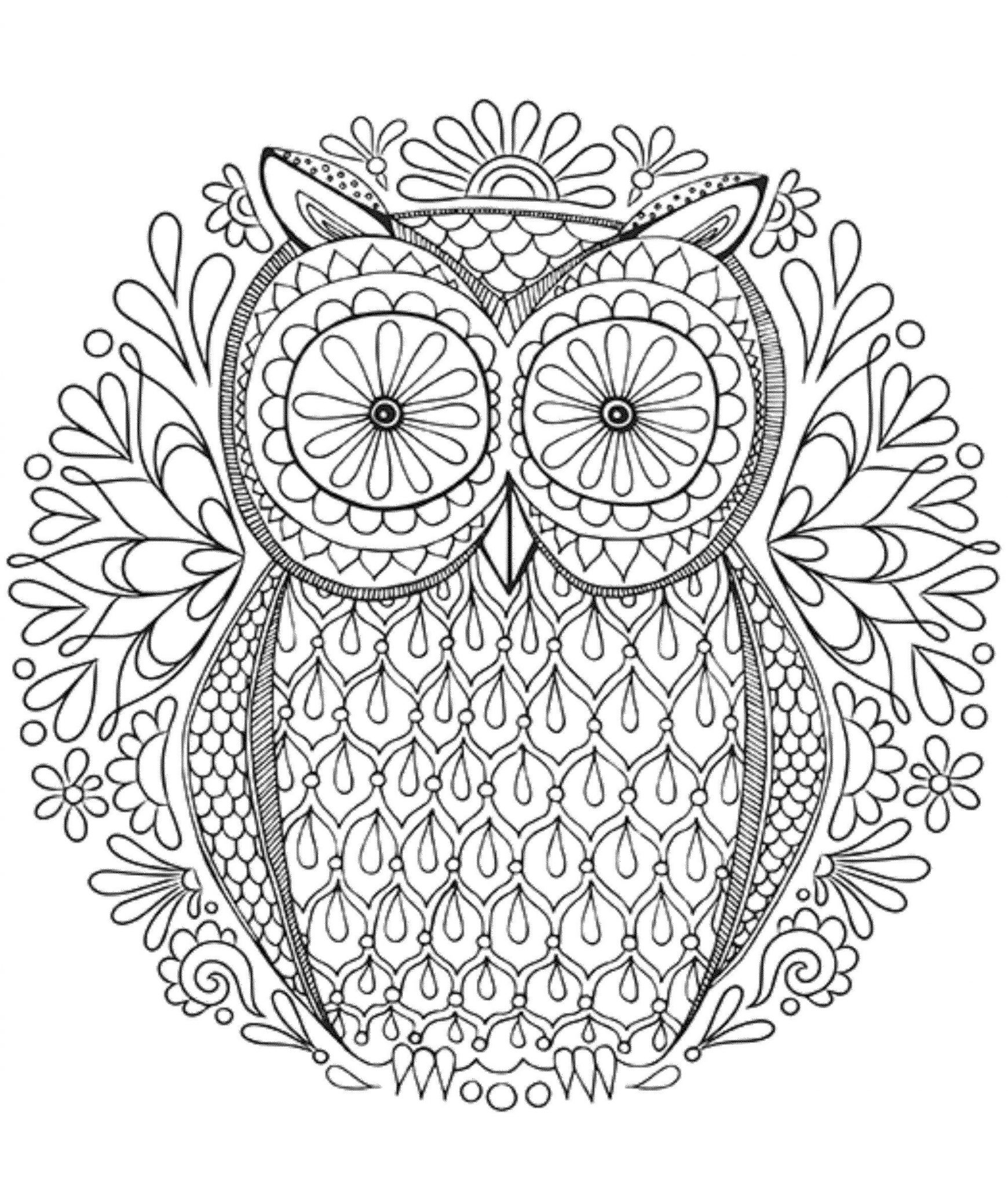 1740x2048 Owl Coloring Pages For Adults Hard
