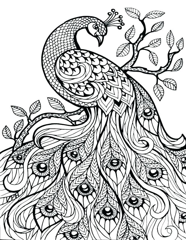 618x800 Coloring Pages Numbers Color