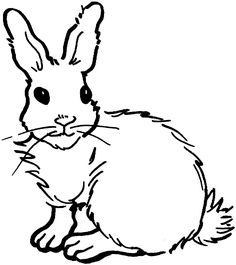 236x265 Bunny Coloring Pages Rabbit, Bunny And Embroidery