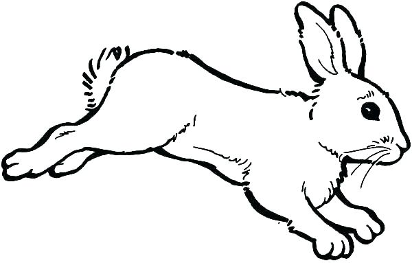 600x383 Coloring Page Of A Rabbit Animal Coloring Pages Rabbit
