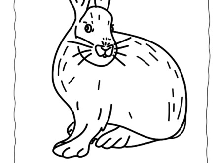 440x330 Arctic Hare Coloring Page Az Coloring Pages, Arctic Hare Coloring