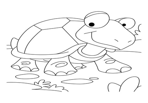 476x333 The Tortoise And Hare Coloring Pages Page Image Clipart Images