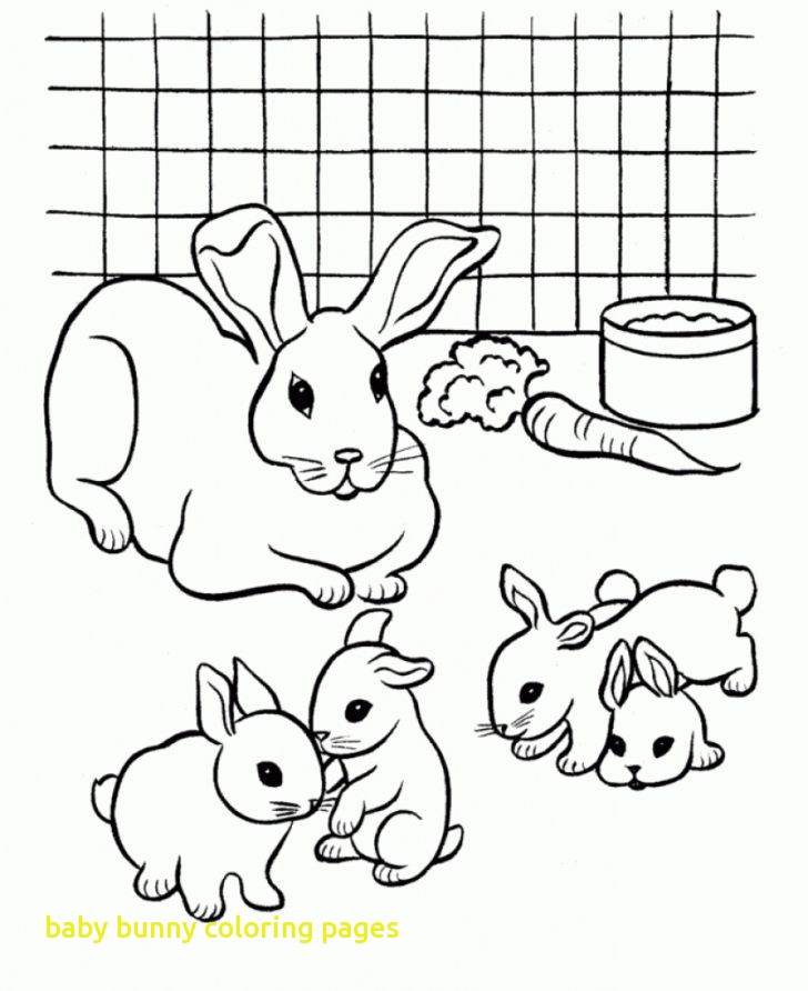 728x892 Baby Rabbit Coloring Pages