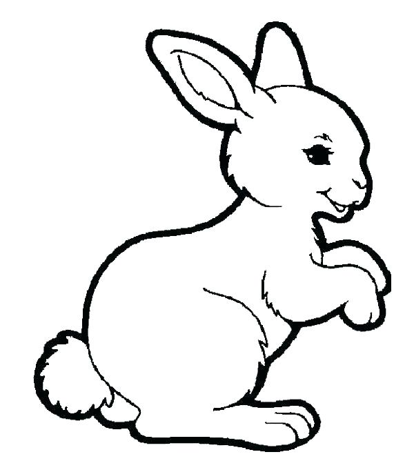 600x668 Bunny Rabbit Coloring Pages