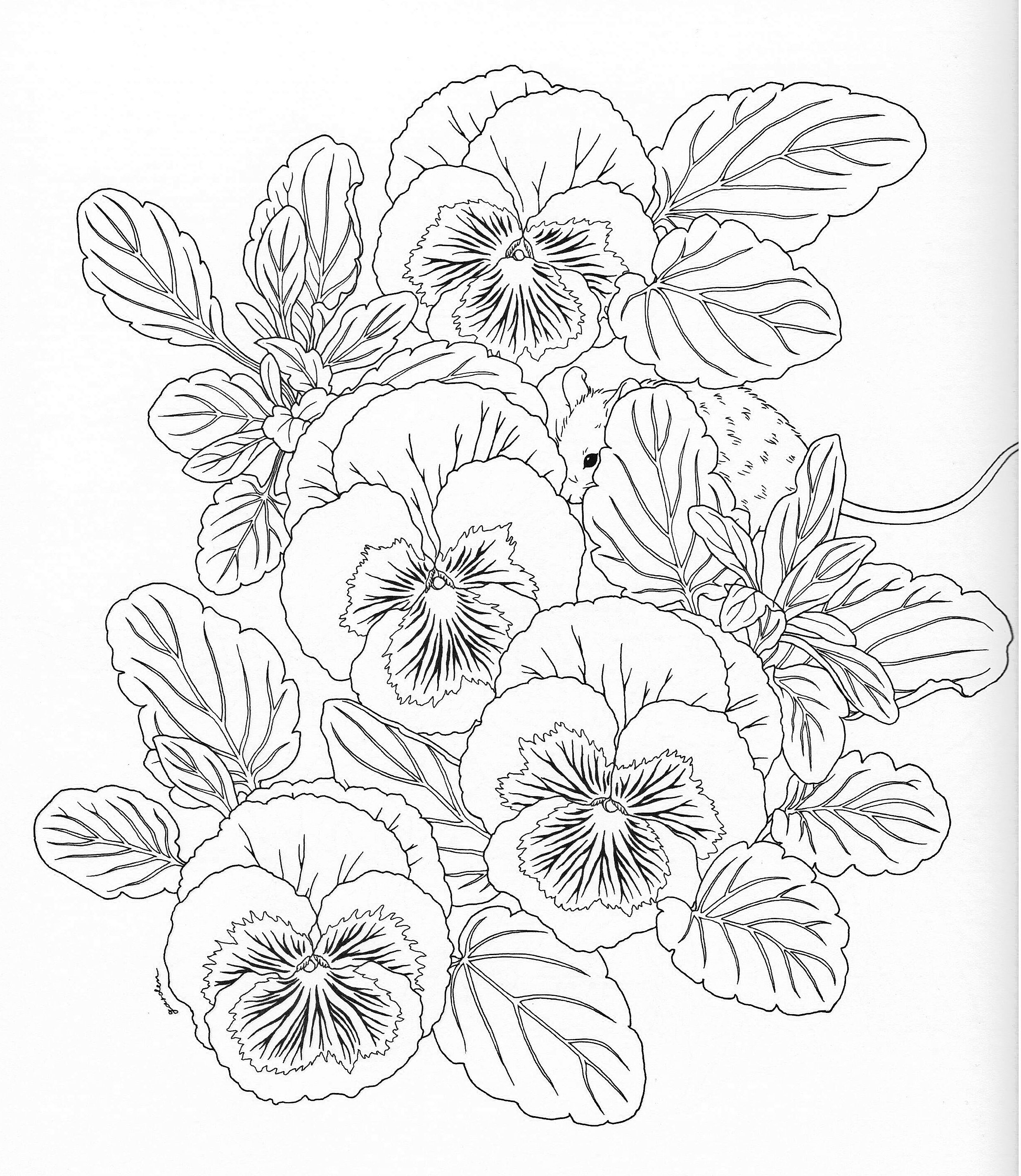 2473x2848 Harmony Of Nature Adult Coloring Book Pg Color Pages