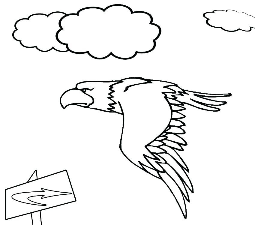 850x750 Harpy Eagle Coloring Page Harpy Eagle Coloring Page Bald Eagle