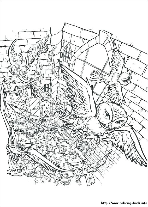 567x794 Harry Potter Coloring Pages Free Harry Potter Coloring Pages Harry