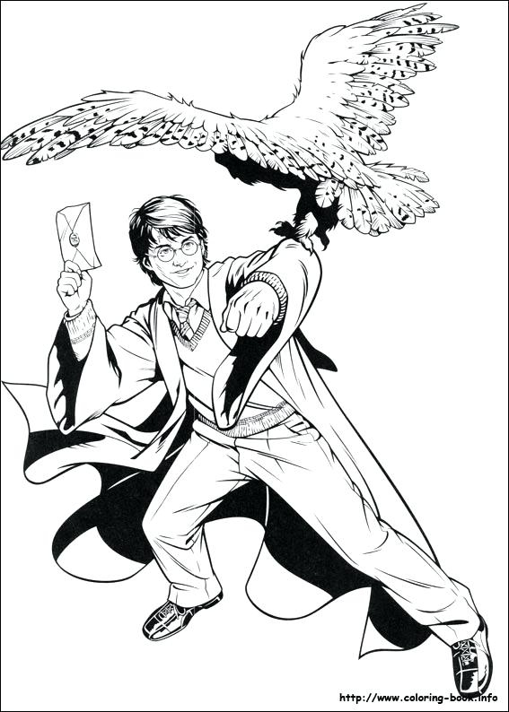 567x794 Harry Potter Coloring Pages To Print Crest Coloring Page Print