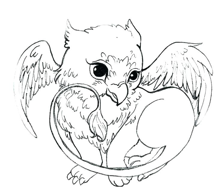 736x638 Google Images Coloring Pages Harry Potter Coloring Pages Google