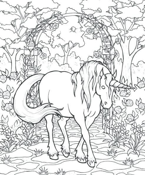 493x595 Mythical Dragon Coloring Sheets Mythical Creature Coloring Pages