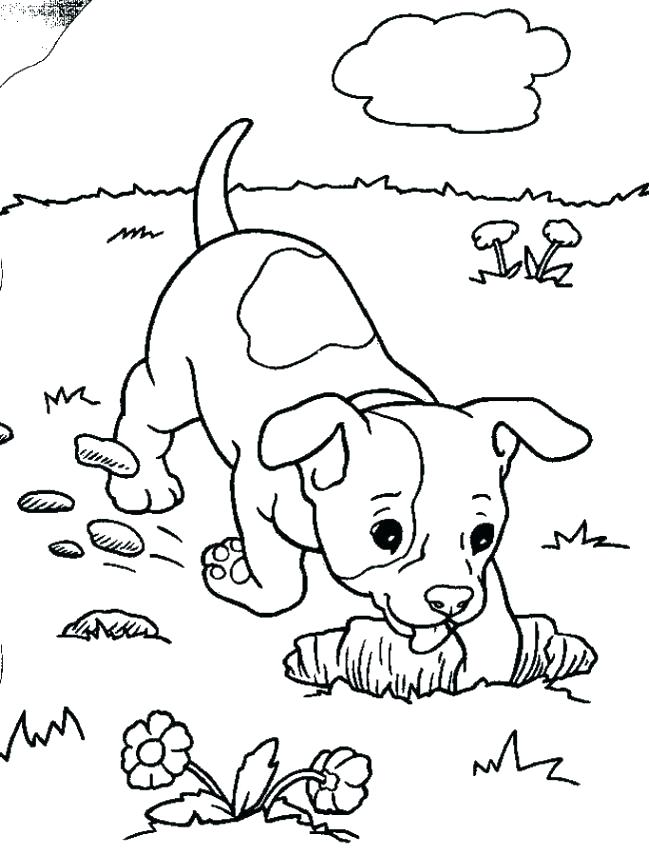 649x854 Harry The Dirty Dog Coloring Sheet Harry The Dirty Dog Coloring