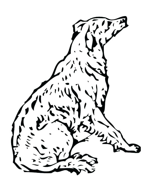 618x800 Coloring Harry The Dirty Dog Coloring Page Free Pages Cute Harry