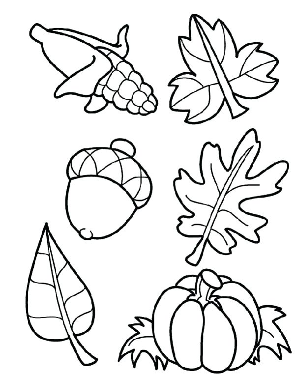 600x761 Harvest Coloring Pages Autumn Harvest Crops In Autumn Season