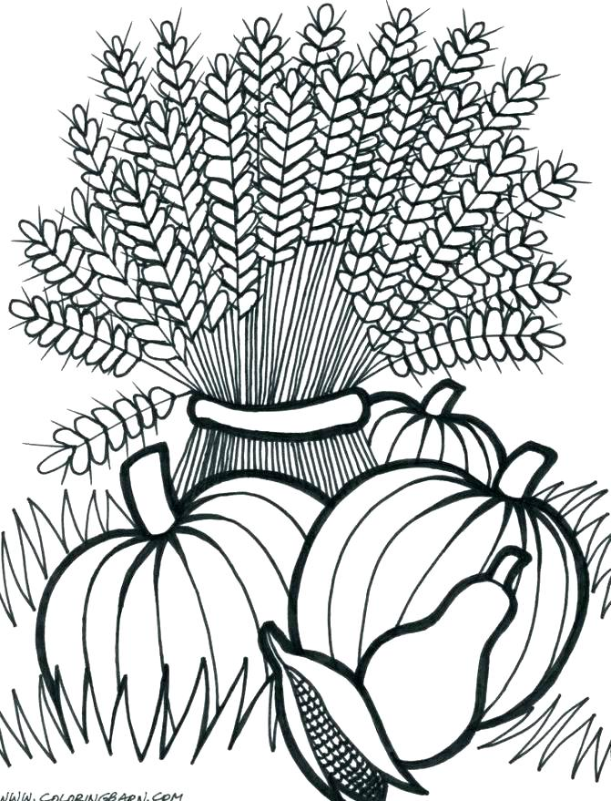 671x879 Harvest Coloring Pages Your Creations You Have Colored This