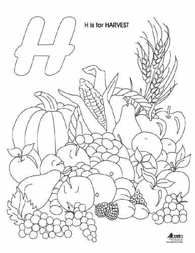 386x500 Harvest Colouring Pages Harvest Color Pages Commonpenceco Download