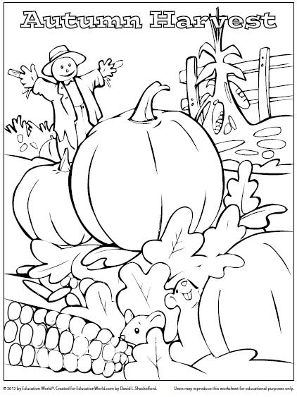 422x563 Harvest Pumpkins And Halloween Fall