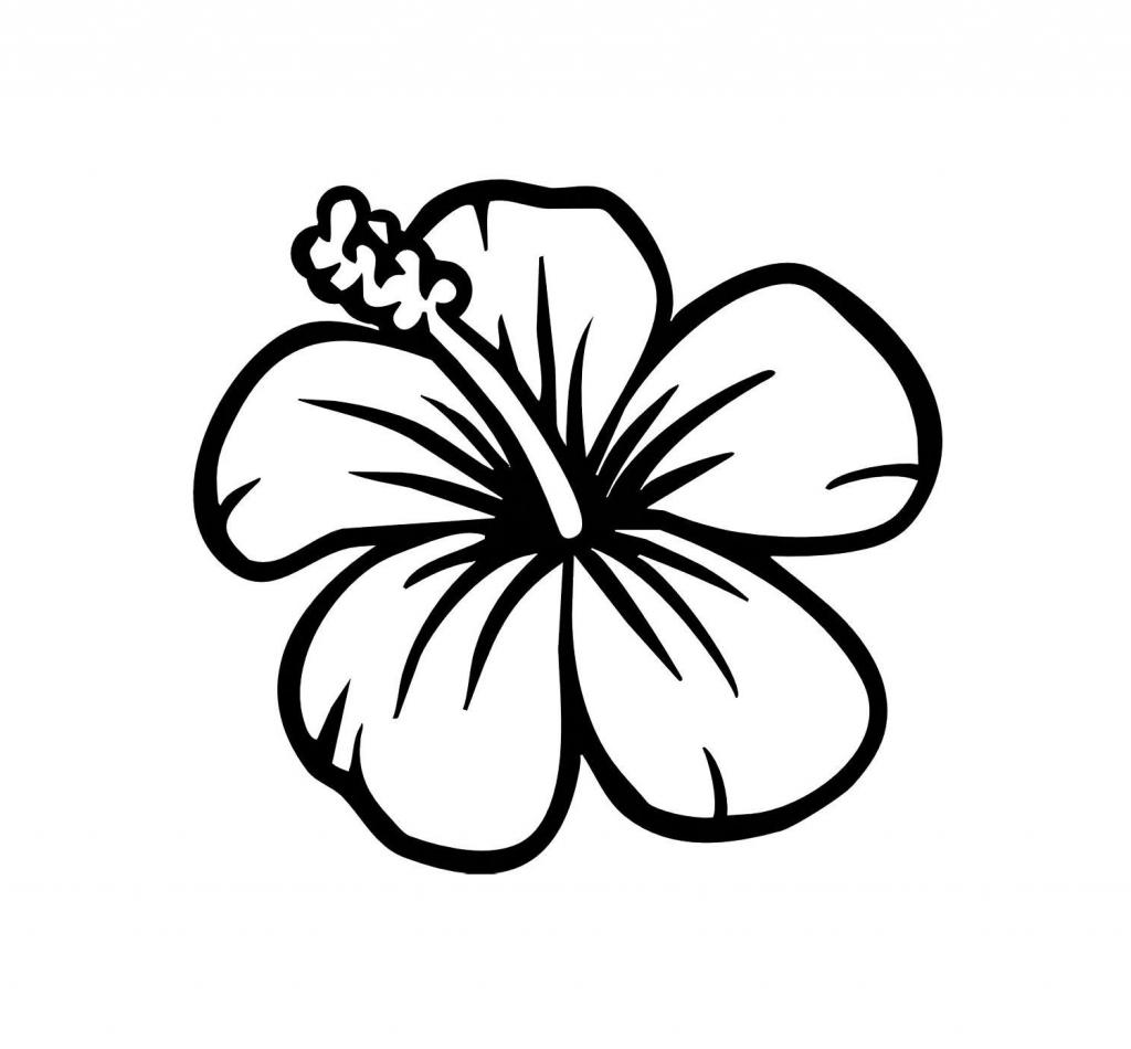 1024x950 Easy To Draw Hawaiian Flowers Hawaiian Flower Drawing Pics