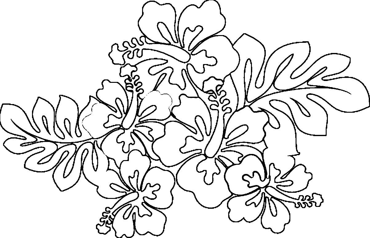 1203x773 Hawaiian Flower Coloring Pages Acpra