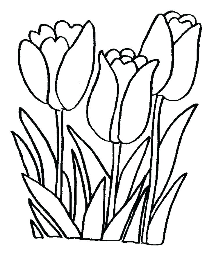 736x892 Printable Coloring Pages Of Flowers Flower Coloring Pages Free