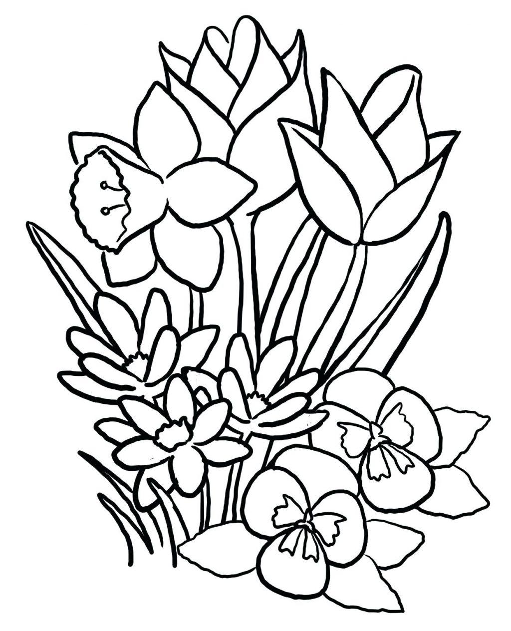 1024x1264 Wonderful Tropical Flowers Coloring Pages Hawaiian Hawaii Flower