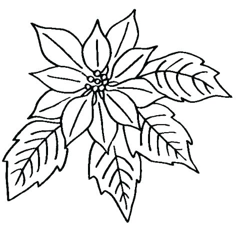 474x451 Coloring Flowers Download Printable Coloring Pages Coloring