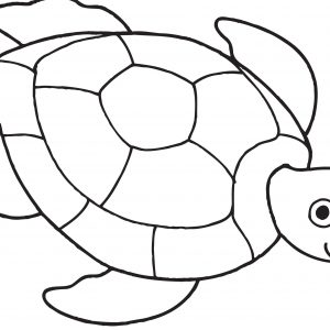 300x300 Hawaiian Turtle Coloring Pages Fresh Sea Turtle Coloring Page