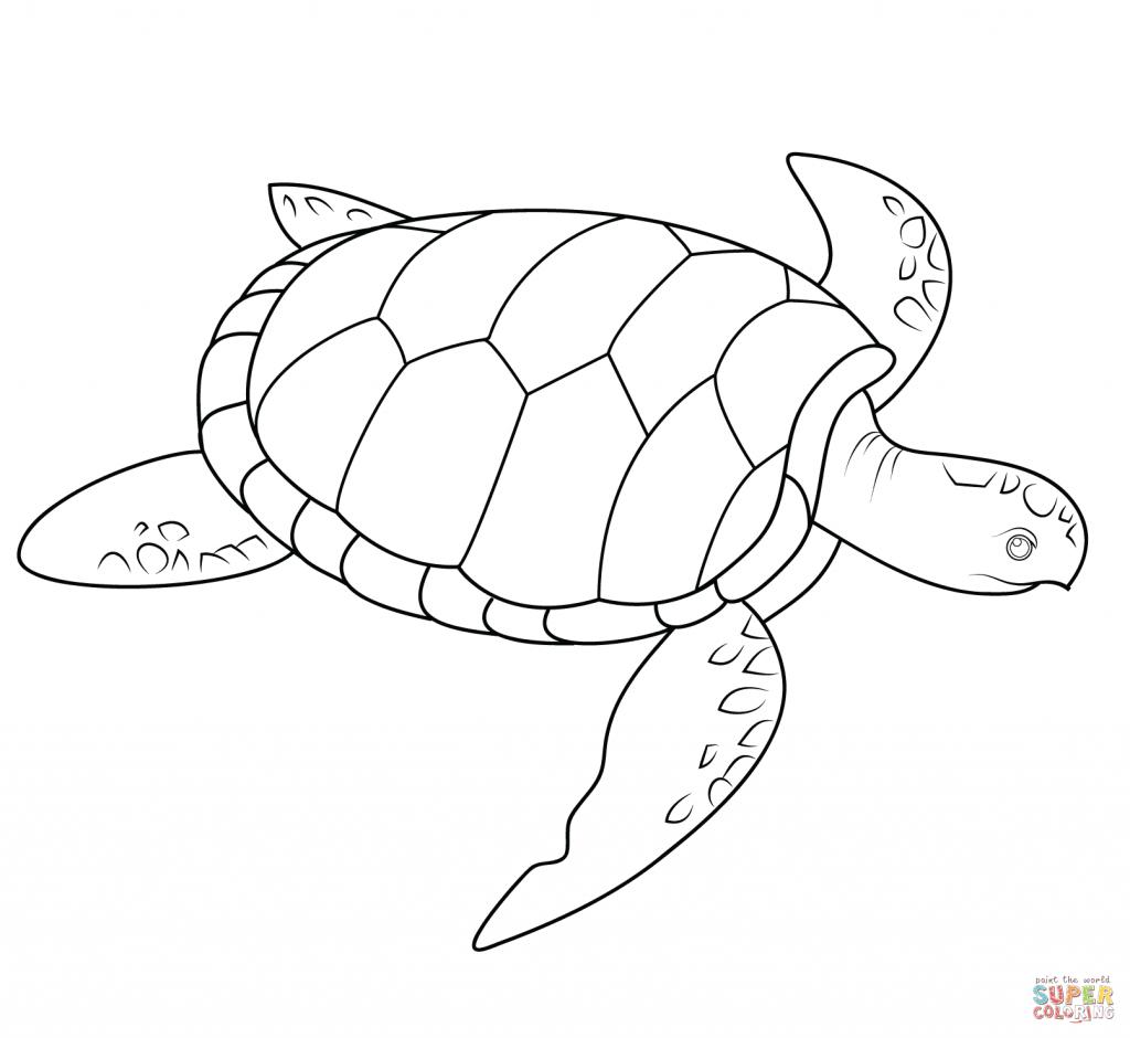 1024x940 Hawaiian Turtle Coloring Pages New Hawaiian Turtle Coloring Pages