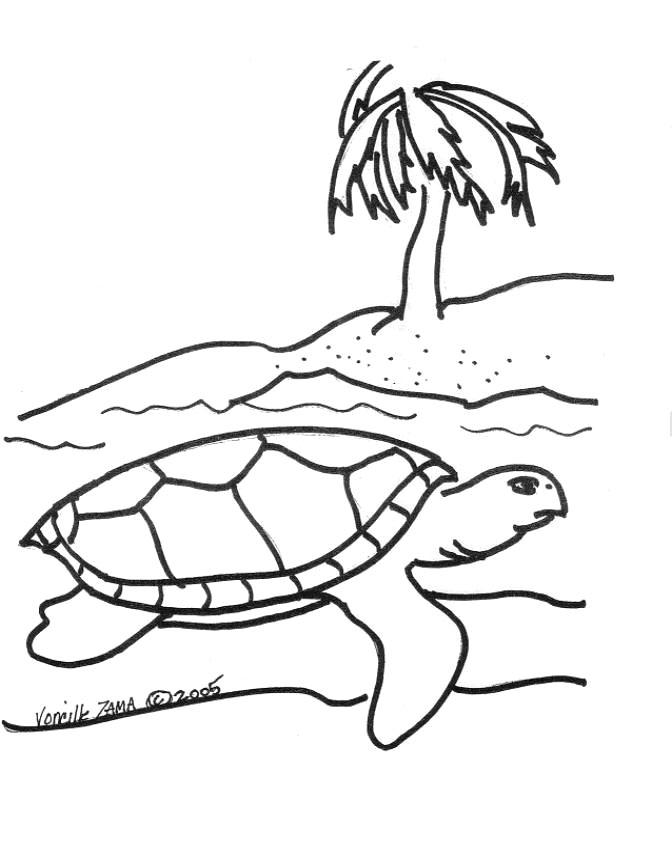 672x856 Sea Turtle Coloring Page Sea Turtle, Inc