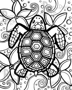 236x295 Sea Turtle Digital Download, Printable, Color Turtle, Digital