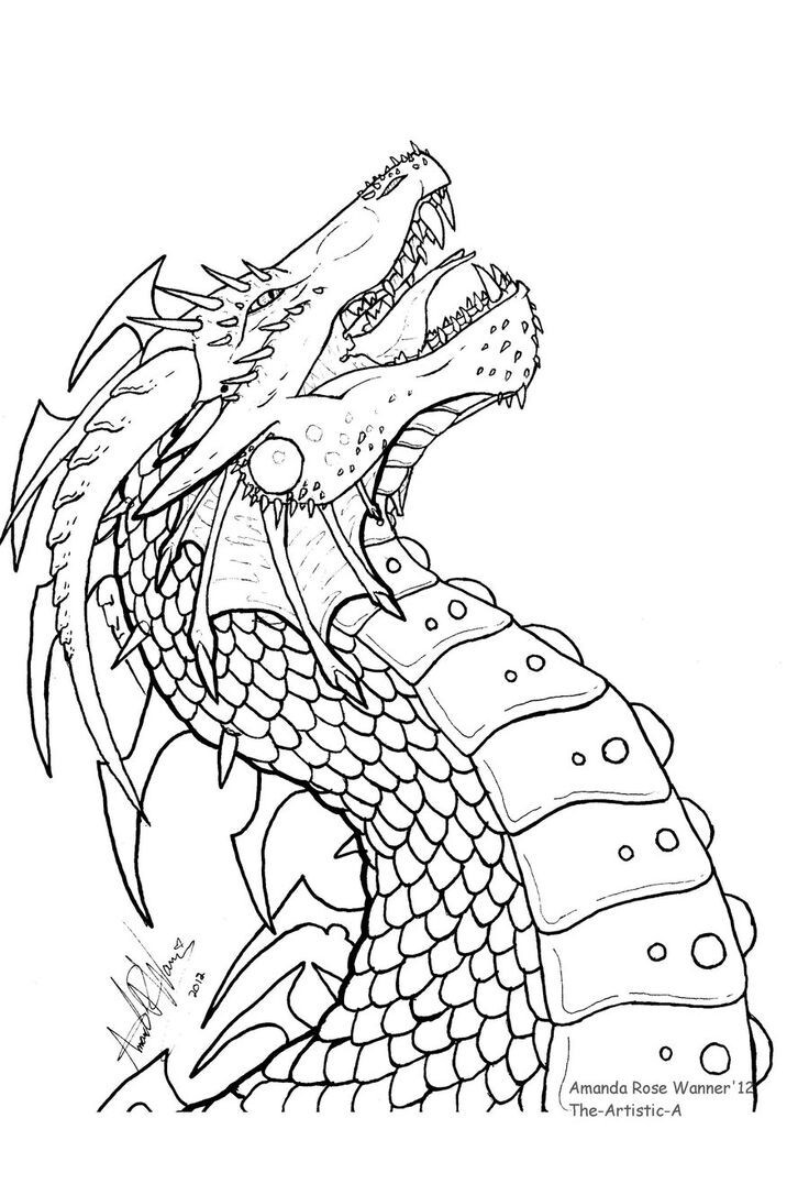 736x1086 Dragon Head Coloring Page