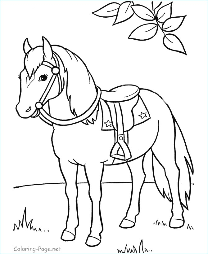 670x820 Horse Head Coloring Page Preeschool