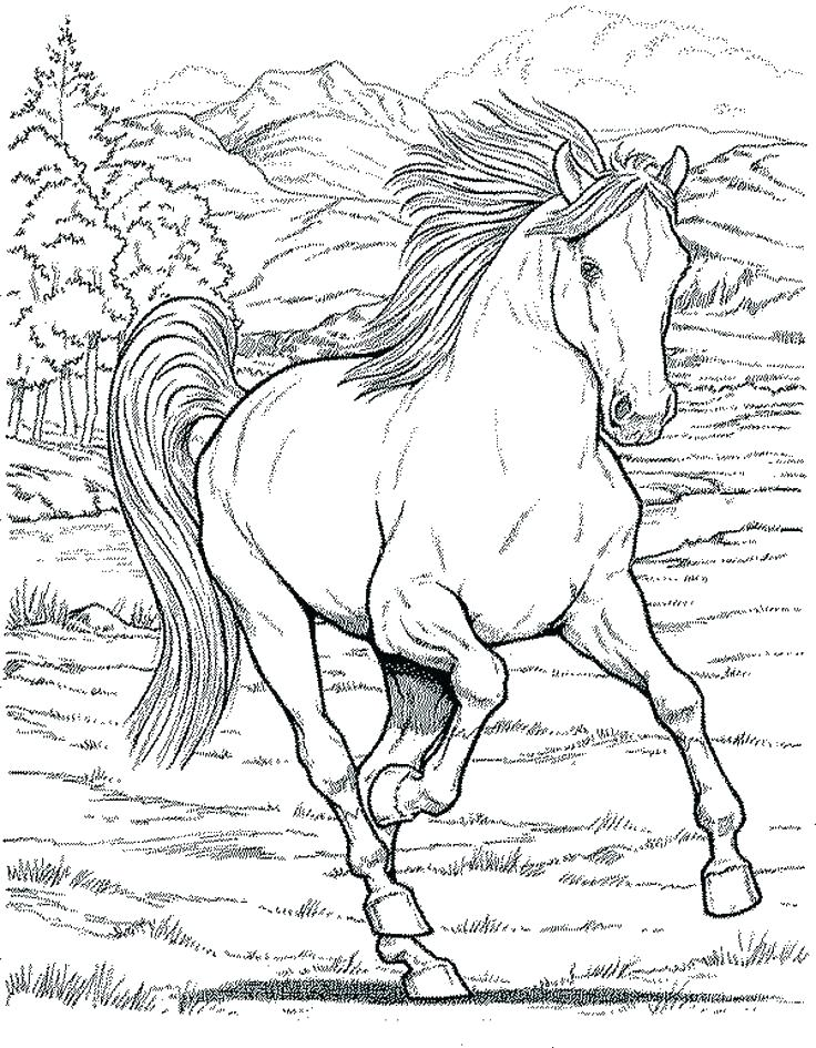 736x945 Horse Head Coloring Pages Printable Kids Coloring Coloring Page